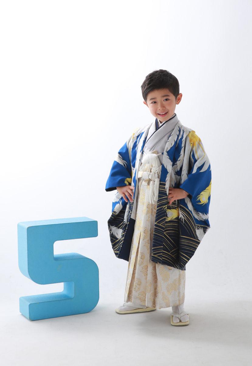 5-248kBL-O/57d10WH-O 花わらべ